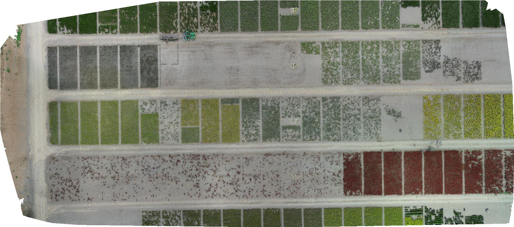Orthomosaic Preview of Drone Imaging UC Davis Biological and Agricultural Engineering
