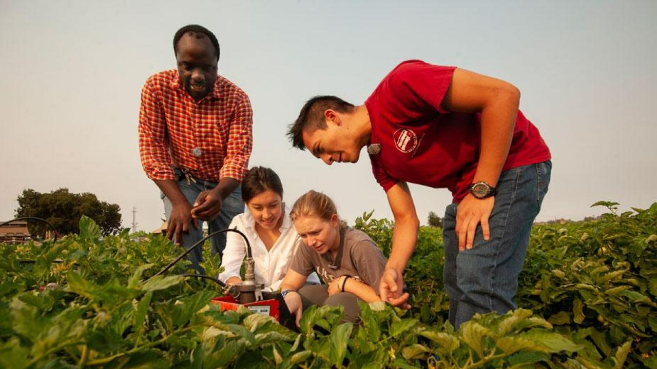Isaya Kisseka with Students Working on Irrigation at UC Davis in Biological and Agricultural Engineering